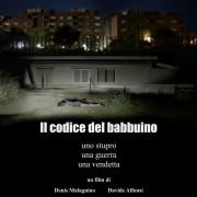 Il Codice del Babbuino