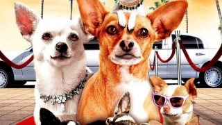 Beverly Hills Chihuahua 2:  Sneak Peek