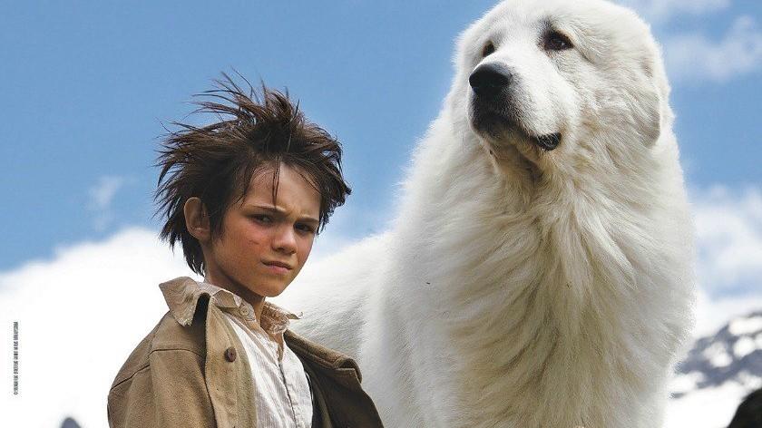 Belle e Sebastien - L'avventura Continua