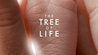 The Tree of Life:  Trailer Italiano