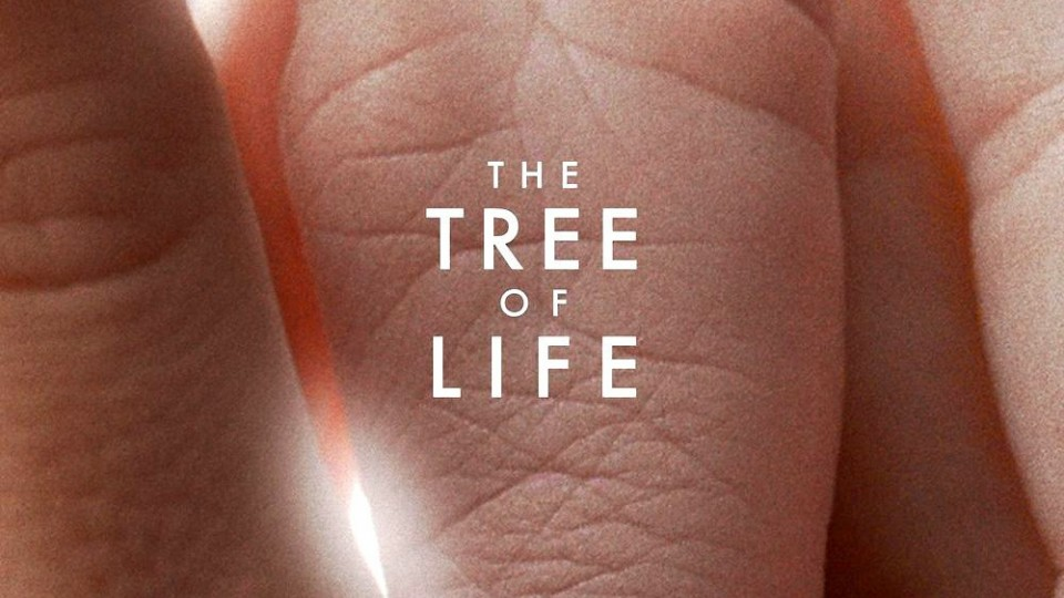 HD - The Tree of Life: Primo Trailer
