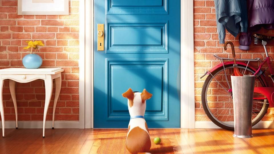 HD - Pets - Vita da Animali: Teaser Trailer Italiano